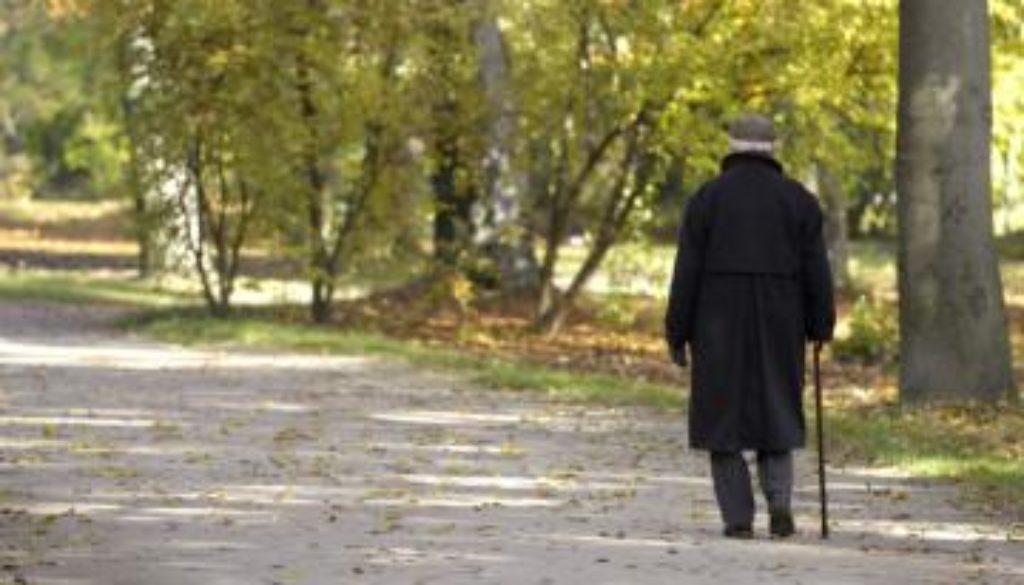 Alzheimer's-Wandering